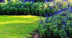 Garten gestalten mit Stil