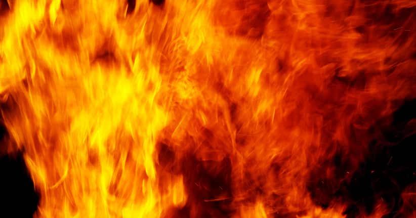 Putin will Lebensmittel verbrennen lassen