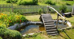 Gartenteich selbst anlegen – nützliche Tipps