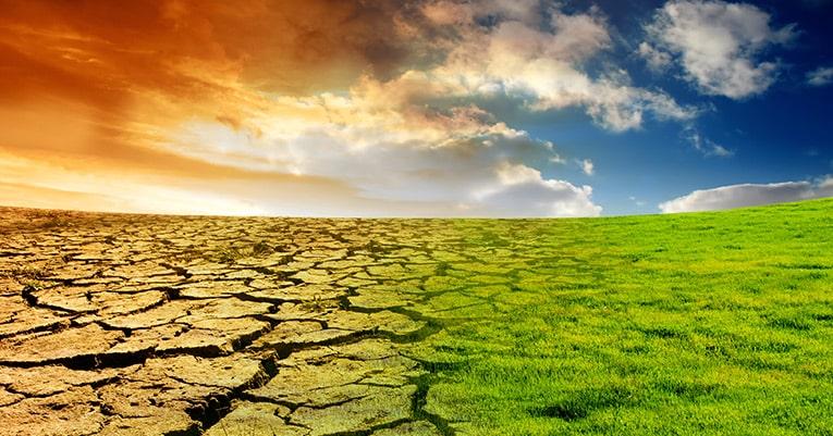Der heißeste Juni seit 1880 – die Erderwärmung ist schuld