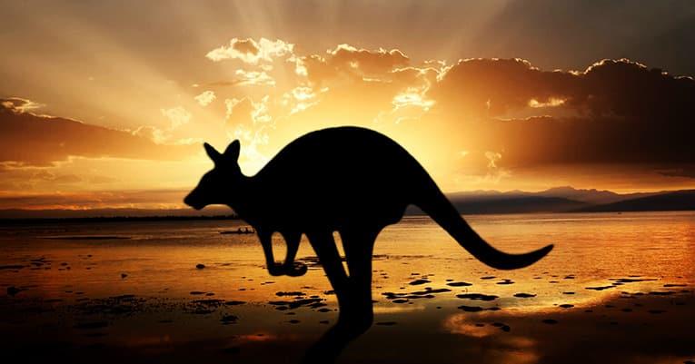 Mit einer Fernreise nach Australien der Winterkälte entfliehen