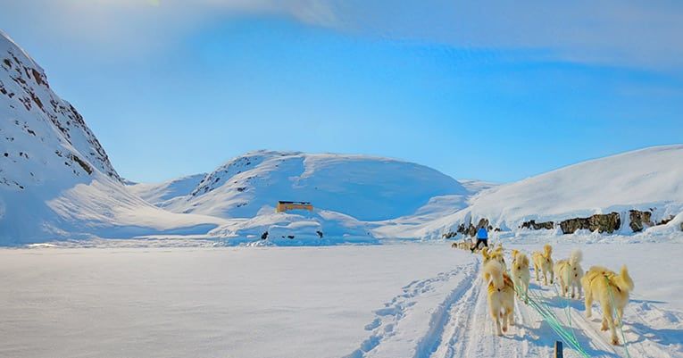 Abenteuerurlaub im Schnee - Willkommen in Grönland