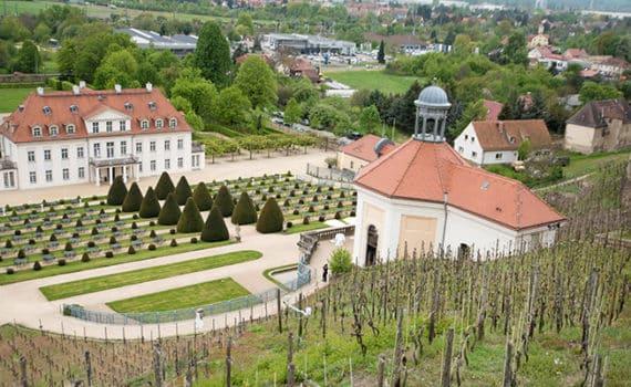 Radebeul - die Weinstadt an der Elbe
